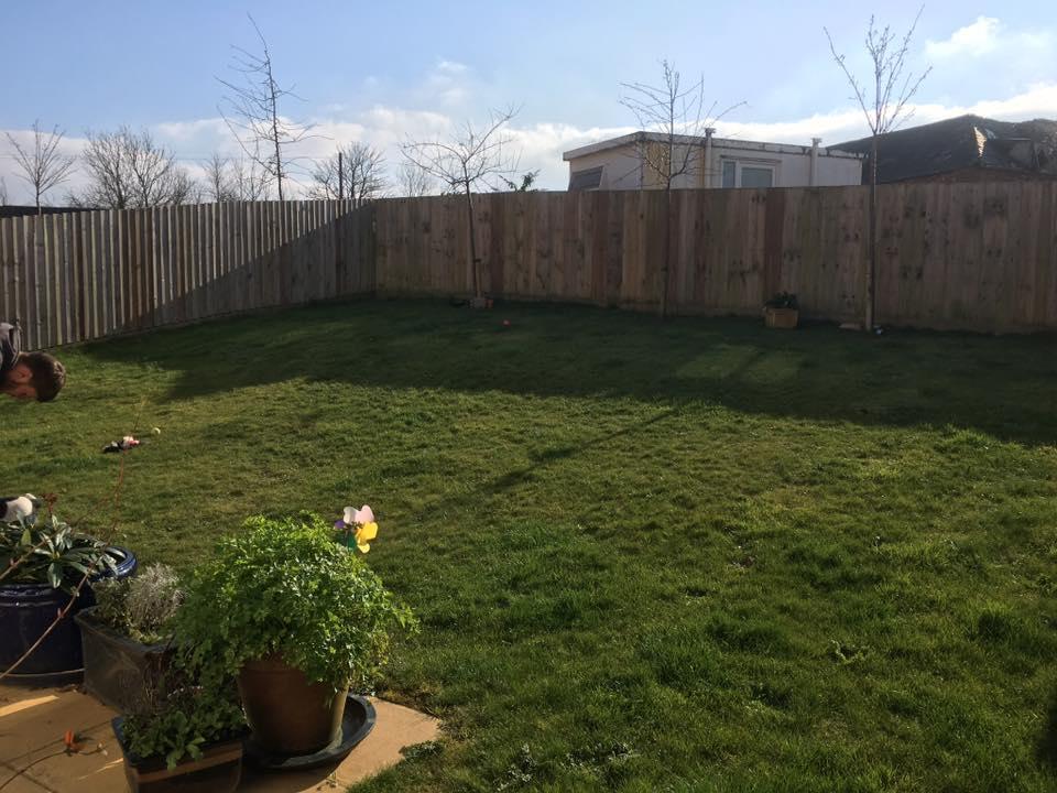 freshly renovated garden