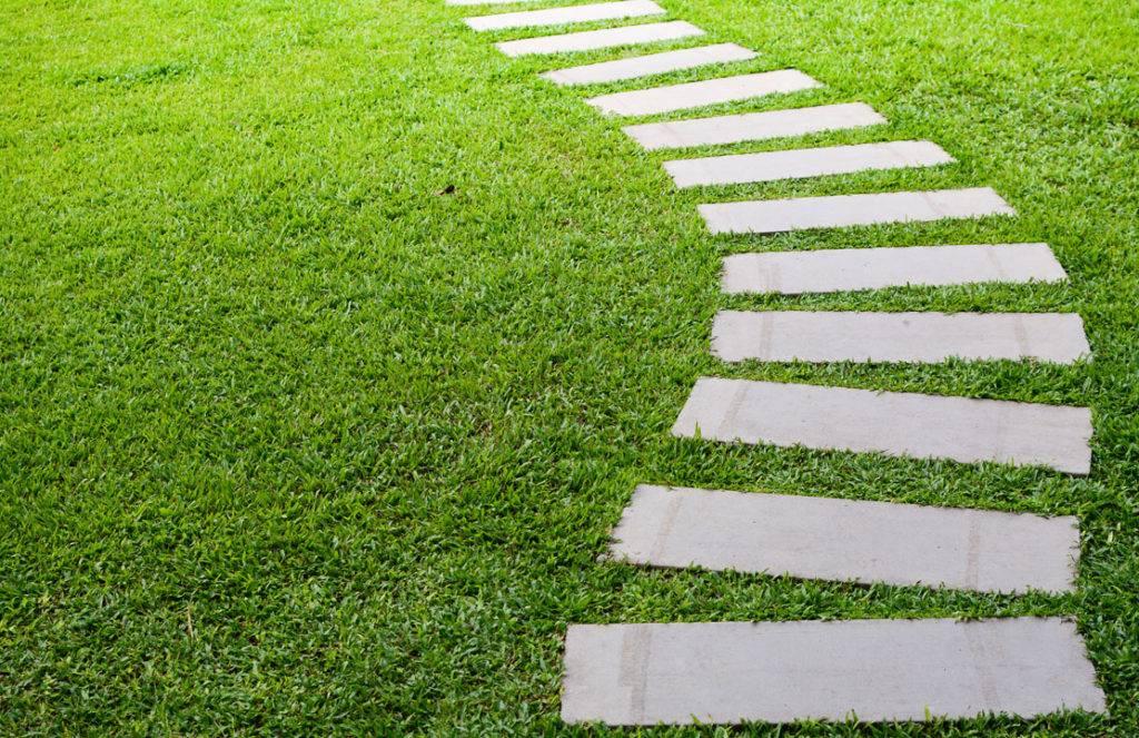 Pathway on Grass