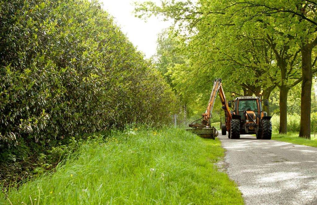 Verge of countryside being cut